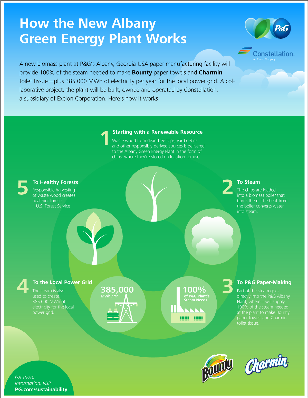 biomass infographic 1200px