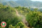Friend of the Earth's petition seeks to stop palm oil and rubber companies' deforestation of Congo basin tropical forest